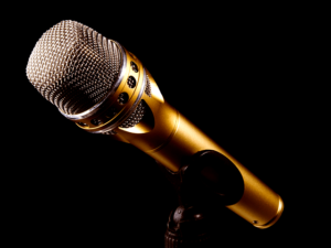 Das dynamische Mikrofon